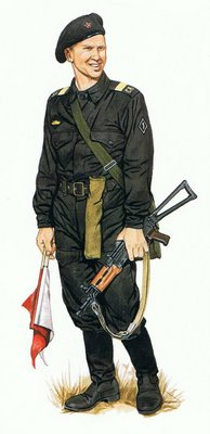 Sargento Mayor, Fuerzas Armadas.