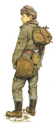 Soldado Polaco, Infantería motorizada.