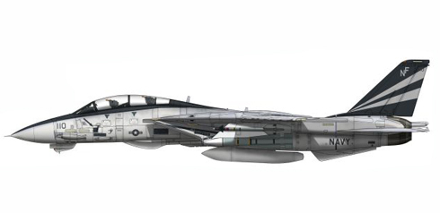 Grumman F-14 A Tomcat, VF-154, 'Black Knights', USS. Kitty Hawk, 2003.