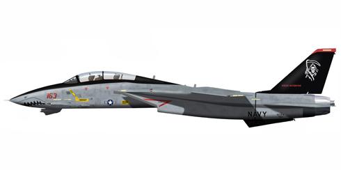 Grumman F-14 D Tomcat, VF-101, 'Grim Reapers', NAS Oceana, 2003.