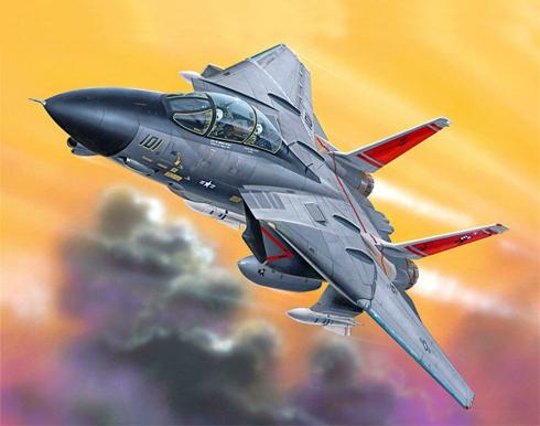 Grumman F-14 D Tomcat, VF-31 'Tomcatters', USS Abraham Lincoln, 2003.