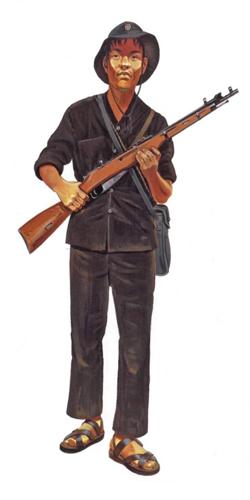Soldado Vietcong, Fuerzas locales, 1967.