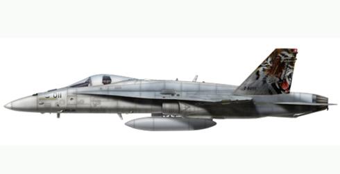FA-18 C Hornet, Staffell 11, NATO Tiger Meet, Swiss Air Force.