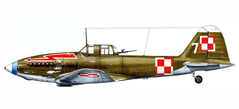Il-2, Fuerza Aérea Polaca, 30º Regimiento Aéreo Naval.
