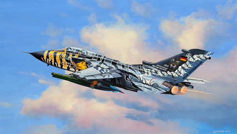 Panavia Tornado, NATO Tiger Meet, Luftwaffe.