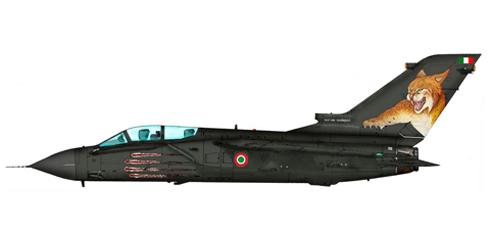 Tornado IDS, 156 Gruppo, pintado para celebración 60.000 horas, Fuerza Aérea Italiana.