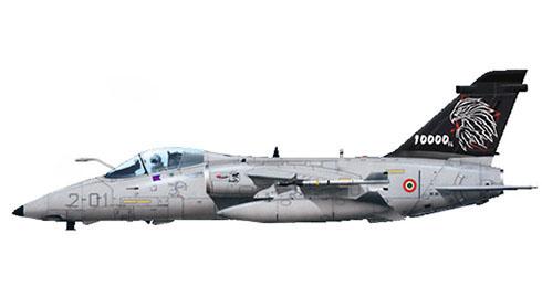 AMX, 2º Stormo, 14º Gruppo, especial 10000 horas, Aeronautica Militare Italiana, Rivolto.
