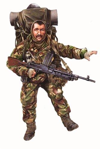 [Imagen: soldado-royal-marines-falkland-islands-m....jpg?w=500]