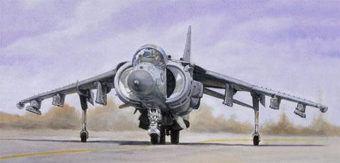 McDonnell Douglas AV-8B Harrier II, USMC, Kuwait, 1991.