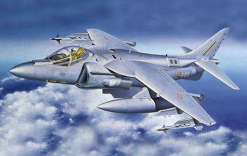 McDonnell Douglas AV-8 Harrier II, Marina Militare Italiana, 2010.