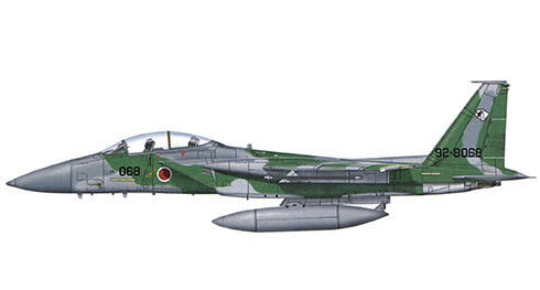 McDonnell Douglas F-15 J Eagle, Grupo Agresor de entrenamiento, Fuerza de Autodefensa Aérea de Japón, Nyutabaru.