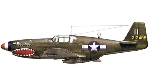 North American P-51 Mustang B-1-NA ''Bull Frog'', 23º Grupo de Caza, Fuerza Aérea de Estados Unidos, 1944.