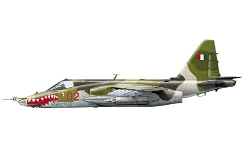 Su-25 Frogfoot, Fuerza Aérea de Costa de Marfíl, Abidjan, Costa de Marfíl, 2004.