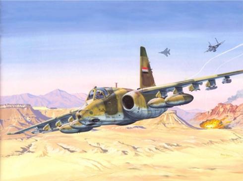 Sukhoi Su-25 Frogfoot, Fuerza Aérea de Egipto.